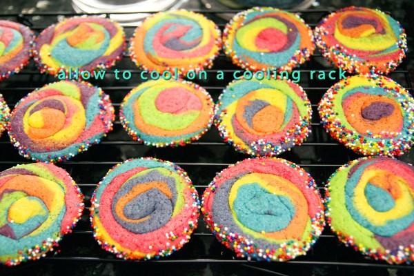 rainbow14 600 x 400 copy