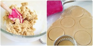 Brown Sugar and Spice (and everything nice) Cut-out Cookies