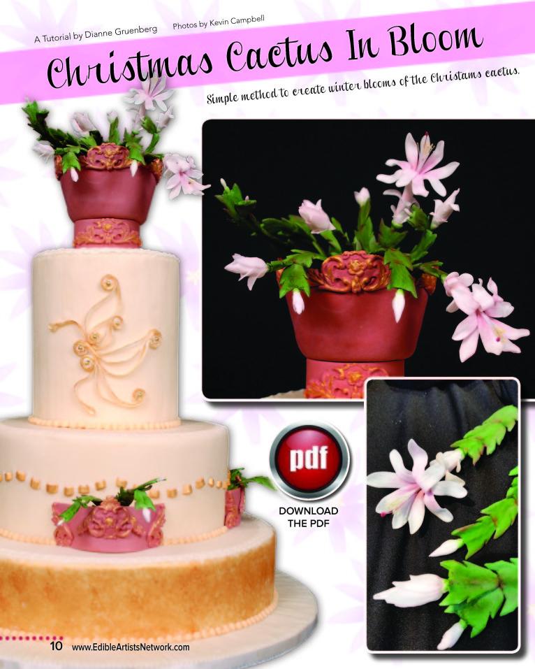 Cactus cake decorating tutorial