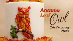 Easy Owl For Cakes With This Cake Decorating Mould