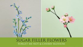 How to Make Forget Me Not & Cherry Blossom | Sugar Filler Flowers Part 9
