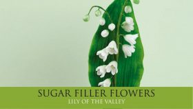 Make a Lily of the Valley   Sugar Filler Flowers Part 4
