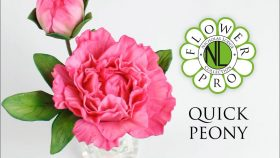 Quick Peony For Cake Decorating Using Flower Pro Petal Cutters