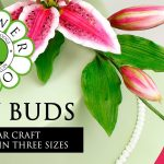 Flower Pro Lily Buds   Cake Decorating Tutorial With Chef Nicholas Lodge